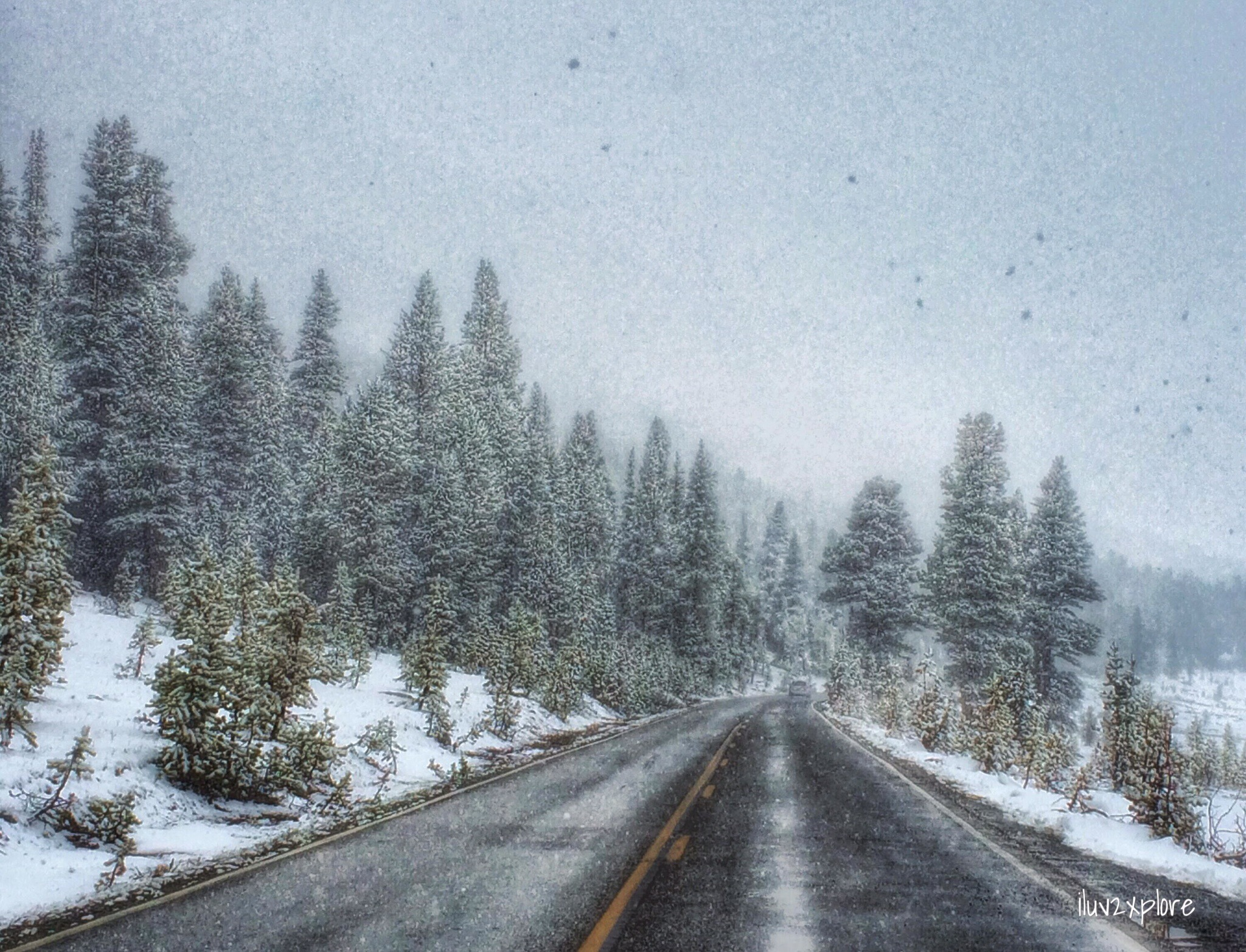 5PM PST: Highway120 (Tioga) just past Tuolumne Meadows in Yosemite National Park.
